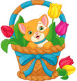cat in basket vector image vector image