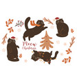 collection christmas cats and decorative vector image