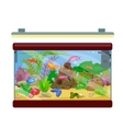 Aquarium fish seaweed underwater with marine vector image vector image
