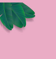 beautiful palm leaf tropical background vector image vector image