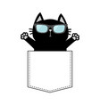cute black cat in pocket wearing sunglasses vector image