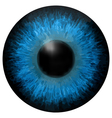 Eye iris texture
