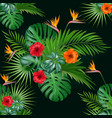 seamless botanical exotic pattern with vector image vector image
