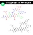 Vasopressin hormone molecule vector image vector image