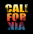 abstrat california palm background vector image