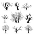 Collection of trees silhouettes vector image vector image