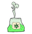 Comic cartoon bag of weed vector image
