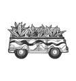 minibus van with cannabis leaf engraving vector image vector image