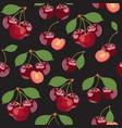 seamless pattern cherry fruits fresh organic vector image
