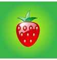 Strawberry on green background vector image