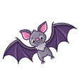 bat on a white background vector image vector image