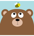 Bear grizzly big head looking at honey bee insect vector image vector image