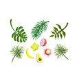bright tropical palm leaves and ripe fruits vector image vector image