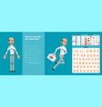 cartoon scientist or doctor character set vector image vector image