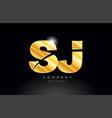 combination letter sj s j gold golden alphabet