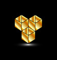 Golden boxes- logo for architect or construction vector image vector image