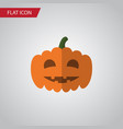 isolated pumpkin flat icon gourd element vector image