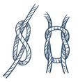rope knot marine equipment ship safety element vector image