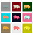 set of in flat style pig vector image