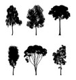 tree silhouettes vector image vector image