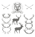 Set of deers silhouette deer head and antlers vector image