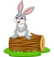 cartoon rabbit sitting on a log vector image vector image
