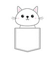 cute baby kitten sitting in the pocket pink vector image vector image