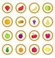 fruit icons circle vector image vector image