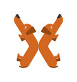 letter x is dog pet font dachshund alphabet vector image vector image