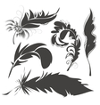 Set bird feathers for drawing vector image vector image