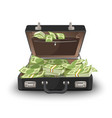 suitcase staffed by dollar banknotes leather case vector image vector image