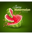 Watermelon with juice splash vector image vector image