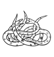 two snakes vector image