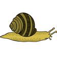 crawling snail vector image vector image