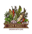 farm market herbs spices and vegetable vector image vector image