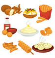 potato food dishes snacks and cooked products vector image vector image