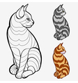 Striped cat vector image