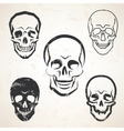skull sketches set in different styles vector image