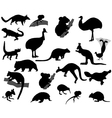 animals australia vector image vector image