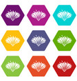 cute flower icons set 9 vector image