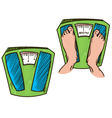 feet on weight scales healthy weight vector image vector image