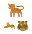 isolated object of tiger and asian symbol set of vector image