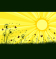 landscape with dandelions and sun vector image vector image