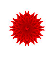 red flower on a white background vector image vector image