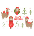 set isolated christmas llama vector image vector image