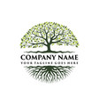 tree of life logo vector image vector image
