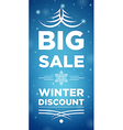 Big Sale winter discount and Snowflake in the vector image