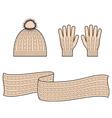 Cap scarf gloves vector image vector image