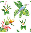 composition tropical bird flowers and plants vector image vector image