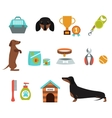 Dachshund dog playing infographic vector image vector image